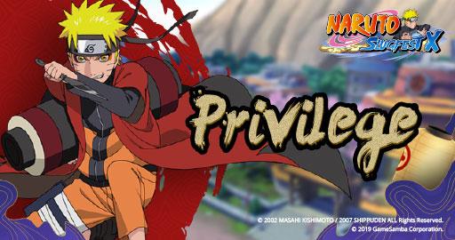 Naruto Slugfest X Privilege